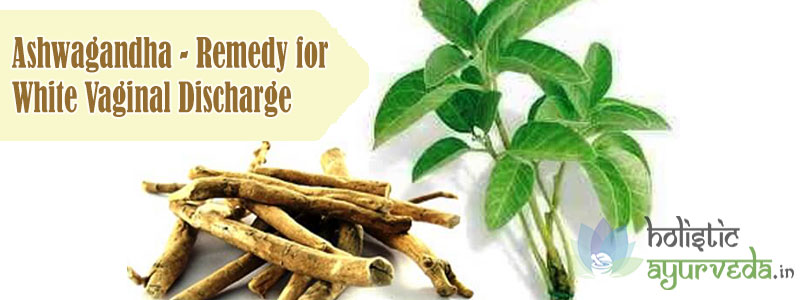 Ashwagandha Remedy for White Vaginal Discharge