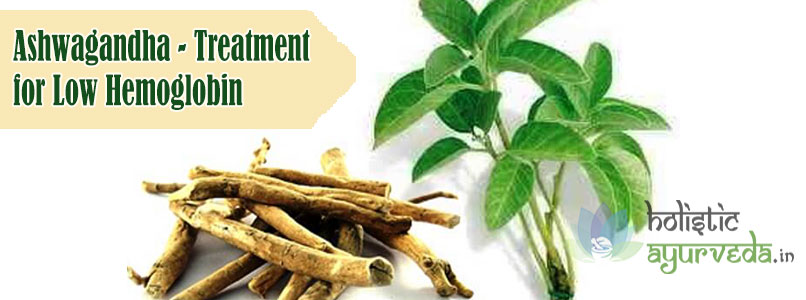 Ashwagandha Treatment for Low Hemoglobin